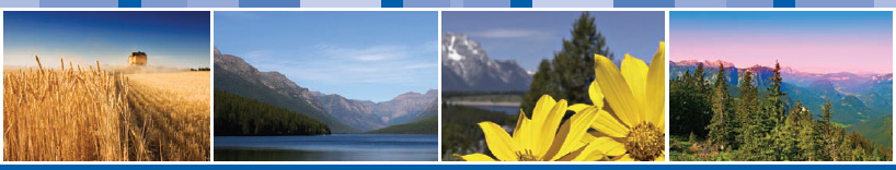 Montana Cancer Consortium Header Image